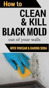 how to clean u0026 kill mold off your walls with vinegar and baking