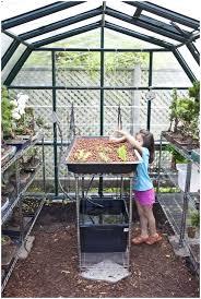 backyards impressive 144 small backyard greenhouse plans trendy