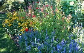great organic vegetable gardening at tower hill best bee flowers