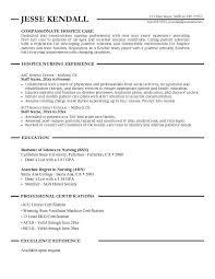 professional nursing resume exles looking compassionate hospice care nursing resume sle with