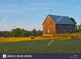 cut field with hay bales at sunrise old farm house barn