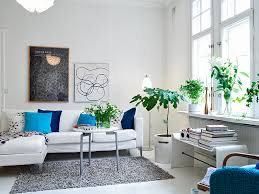 Home Decor Plants Living Room by Beautiful Color Ideas Home Decor Pictures For Hall Kitchen