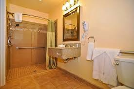 Download Handicap Bathroom Design Gencongresscom - Handicapped bathroom designs