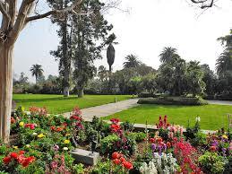 Huntington Botanical Garden by Urban Safari Huntington Library Rainydaymagazine