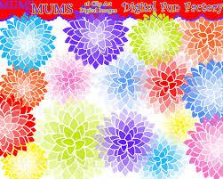 mum flower clip art 59