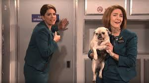 in defence of saoirse ronan amid the caustic snl u0027aer lingus