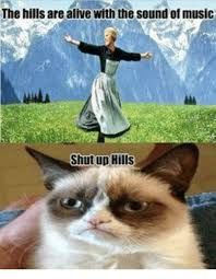 Sound Of Music Meme - the hills are alive with the sound of music shut up hills meme