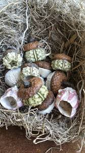 home interior accents sputnik urchin acorns green sea urchin acorn caps home