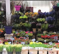 flower shops in 125 best flower shops images on flower shops flower