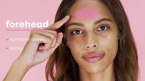 Face Mapping Acne Acne Face Mapping Riley Rose Youtube