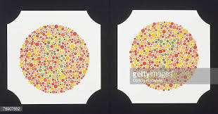 color blindness stock photos and pictures getty images