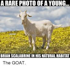 Brian Scalabrine Memes - a rare photo of a young onbamemes brian scalabrine in his natural