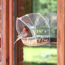 cute bird feeder bird feeders for large wild birds balcony bird