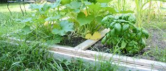 diy raised vegetable garden the makeshift nest