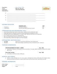 uae standard professional resume format