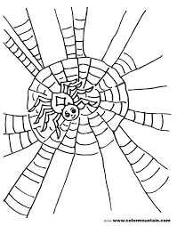 spider color picture create a printout or activity