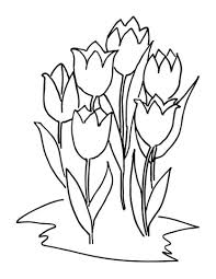 tulips coloring free printable coloring pages