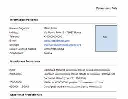 curriculum vitae formato pdf da compilare curriculum vitae cv da compilare online