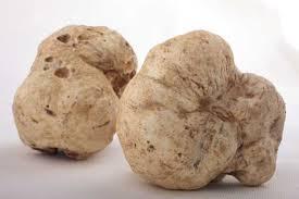 italian white truffle alma gourmet products
