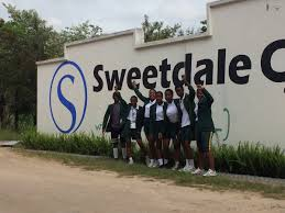 high camp gardenias sweetdale sweetdalecamp twitter