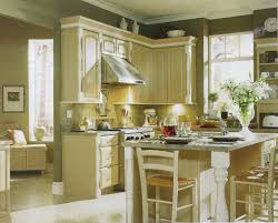 Taupe Kitchen Cabinets Kitchen Captivating Small Kitchen Decoration Using Light Yellow