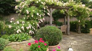 Ideas For Small Garden by Top Ten Design Ideas For Small Gardens U2014 Abbotswood