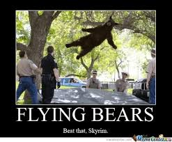 Bears Meme - 35 most funniest bear meme pictures and photos