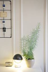 100 indoor apartment garden indoor gardens for small apartments