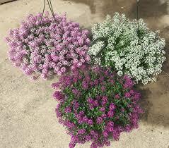 getting ready for spring kremp florist blog