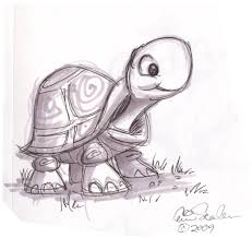 cartoon animal sketch cute turtle drawings pinterest