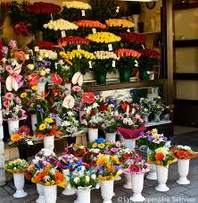 Flower Shops by Flower Shops On Viru Street Tallinn 101