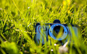 sea pride camera green grass wallpaper