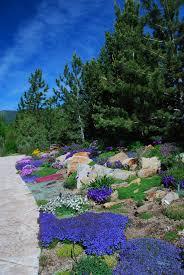 Colorado Botanical Gardens Photo Gallery Media Betty Ford Alpine Gardens