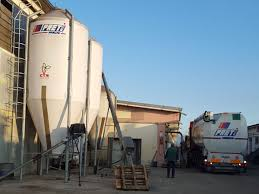 noleggio capannoni strutture per allevamento suini affitto soccida suini noleggio