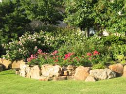 native plants to texas landscaping with native and well adapted plants