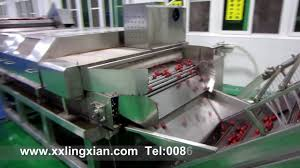 lychee juice lychee peeling machine lychee juice processing equipment how to