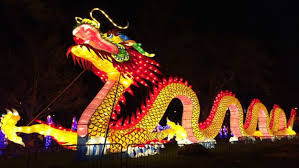 lantern light festival miami tickets this lantern festival is like a real life psychedelic wonderland