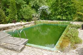 biotop converting a swimming pond into a living pool