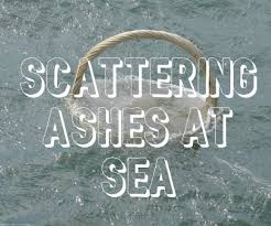 scattering ashes at sea how to scatter ashes at sea wehavekids