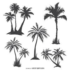 palm tree svg monochrome palm trees silhouettes vector download