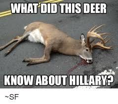 Deer Meme - what did this deer know about hillary sf deer meme on me me
