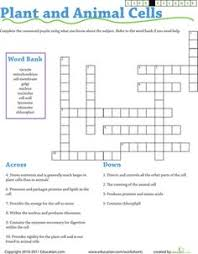 life science crossword photosynthesis science worksheets