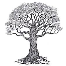 30 celtic tree tattoos and designs