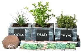 windowsill planter garden plants deck herb garden ideas kitchen