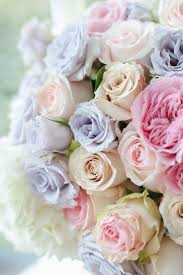 Picture Of Roses Flowers - best 20 pastel flowers ideas on pinterest flowers flora and