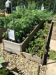 Raised Vegetable Garden Ideas Organic Gardening Container Gardening Ideas Raised Vegetable