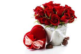 wallpaper flower red rose red rose flower pots 51513 flowers gifts festival