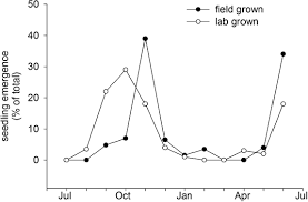 flowering time and seed dormancy control use external coincidence
