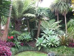 tropical garden design concept small front garden design ideas