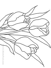 free coloring pages flower gardens coloring pages ideas